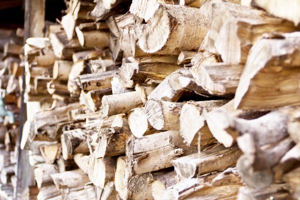 焚き火の薪