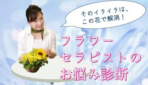 おうち時間の処方箋。 夏花のフラワーセラピーでイライラをすっきり!