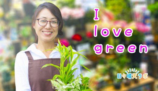 おしゃれな観葉植物を簡単に育てたい!キレイなまま育てるコツとは?