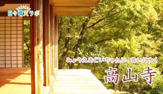 高山寺明恵上人の人間味あふれるエピソードで高僧のイメージが変わる!